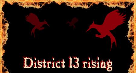 District 13 rising - A Hunger Games RPG Oben10