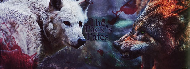 The Pack's Fates *Wolf RP* Fixed10