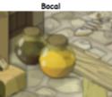 Indices Chasse aux trésors et Portail. Bocal12
