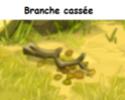 Indices Chasse aux trésors et Portail. Branch10