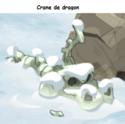 Indices Chasse aux trésors et Portail. Crane_11
