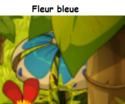 Indices Chasse aux trésors et Portail. Fleur_11
