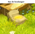 Indices Chasse aux trésors et Portail. Sac_de19