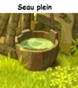 Indices Chasse aux trésors et Portail. Seau_p12