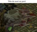 Indices Chasse aux trésors et Portail. Tete_d12