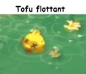 Indices Chasse aux trésors et Portail. Tofu_f10