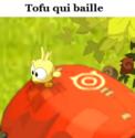 Indices Chasse aux trésors et Portail. Tofu_q11