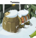 Indices Chasse aux trésors et Portail. Tonnea17