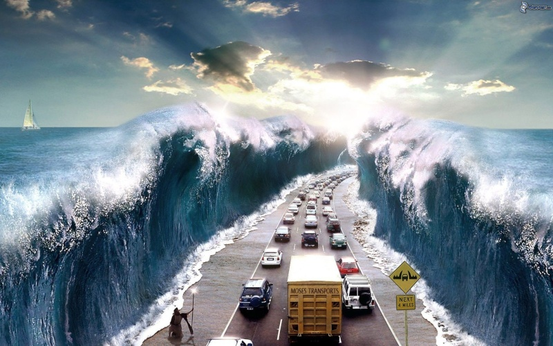 Misères de Noé - Page 3 Moise_10