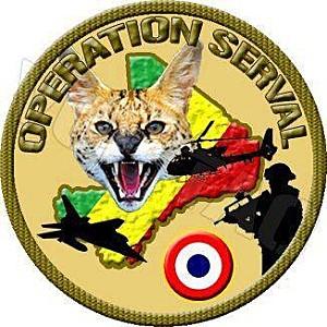 Opération Road To Gao [ Mission accomplie ] Mali-s10