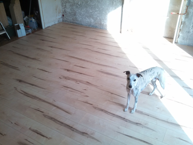 Travaux (TERMINÉS !) : Habillage d'un salon en bois massif Img_2015