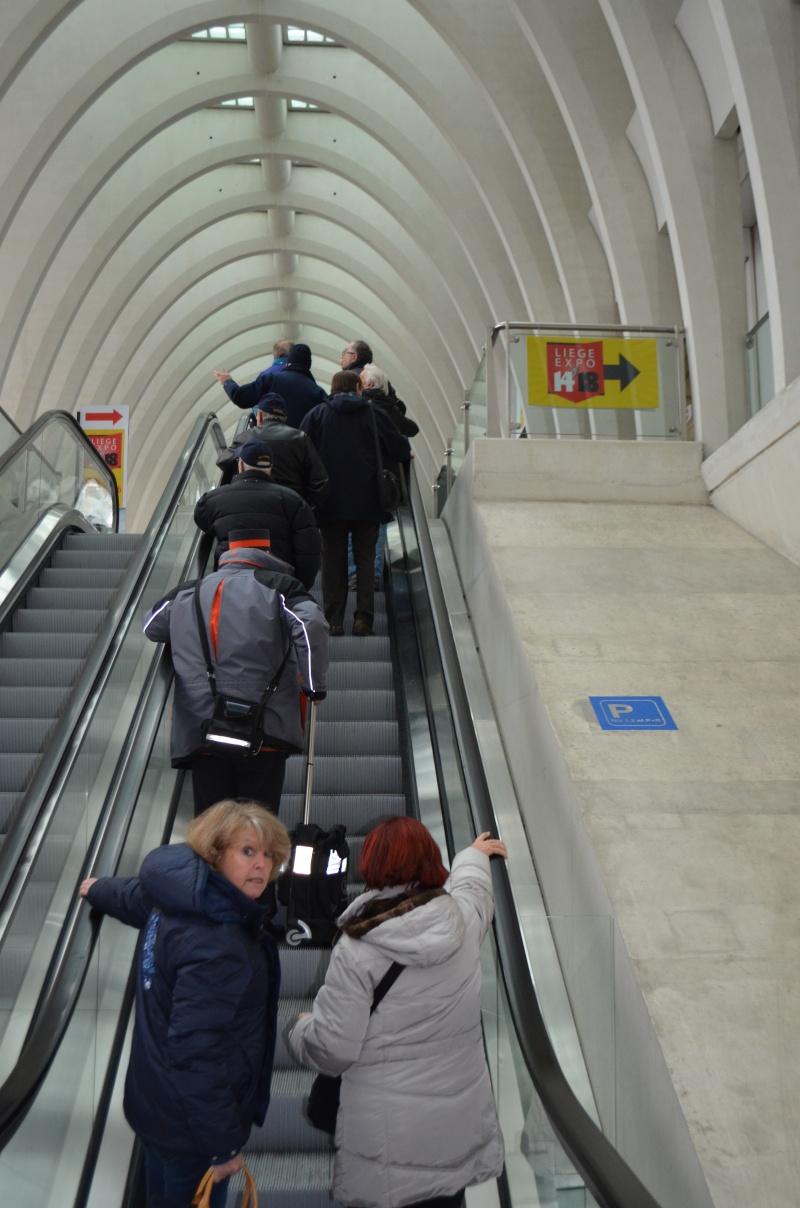 visite expos 14-18 à Liège le 27.12.2014 14-18_18