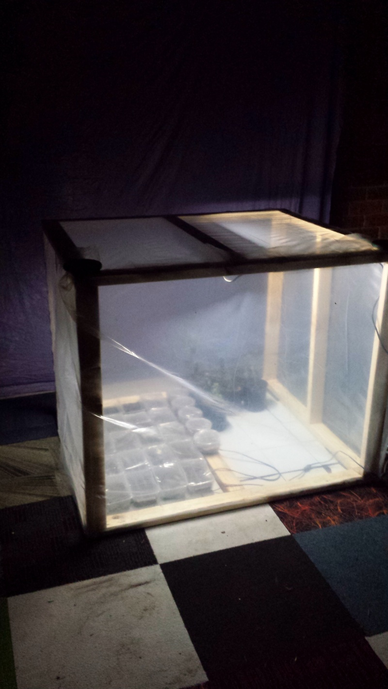 DIY grow box Image18
