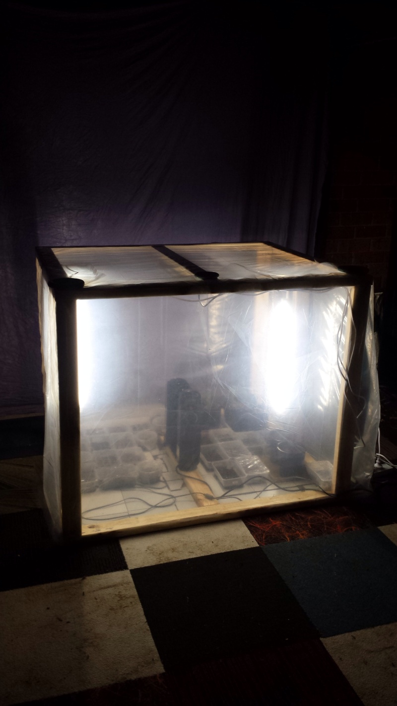 DIY grow box Image21