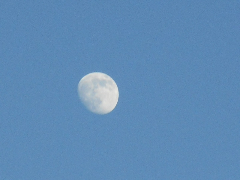luna di luglio 01510