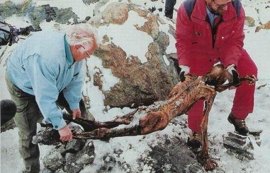Descubren ADN no humano en la momia llamada el Hombre de Hielo (Ötzi) de 5.300 años de antigüedad 115