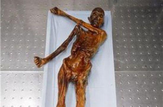 Descubren ADN no humano en la momia llamada el Hombre de Hielo (Ötzi) de 5.300 años de antigüedad 215