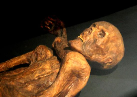 Descubren ADN no humano en la momia llamada el Hombre de Hielo (Ötzi) de 5.300 años de antigüedad 313