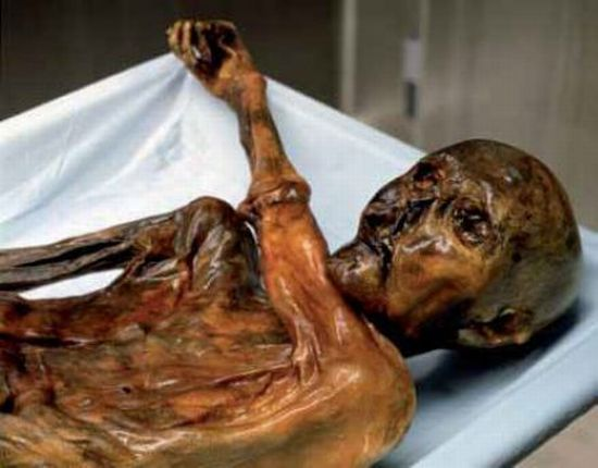 Descubren ADN no humano en la momia llamada el Hombre de Hielo (Ötzi) de 5.300 años de antigüedad 414