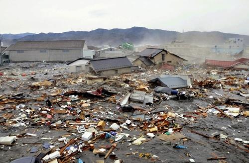 Criatura mutante grabada en el Tsunami del Japón 88710