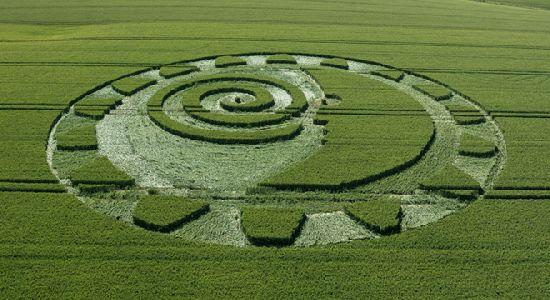 Crop Circles. Círculos de las Cosechas 2014 Cc11_110
