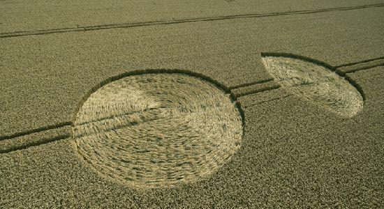 Crop Circles. Círculos de las Cosechas 2014 Cc20_110