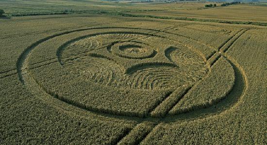 Crop Circles. Círculos de las Cosechas 2014 Cc22_110