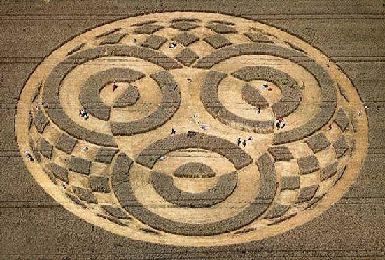 Crop Circles. Círculos de las Cosechas 2014 Cc27_110