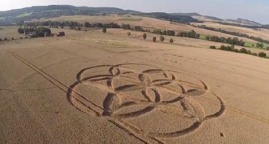 Crop Circles. Círculos de las Cosechas 2014 Cc33_110