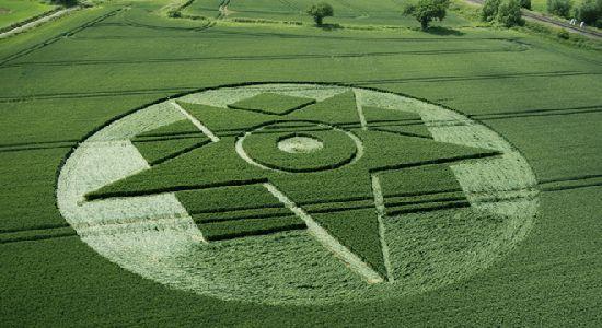Crop Circles. Círculos de las Cosechas 2014 Cc3_110