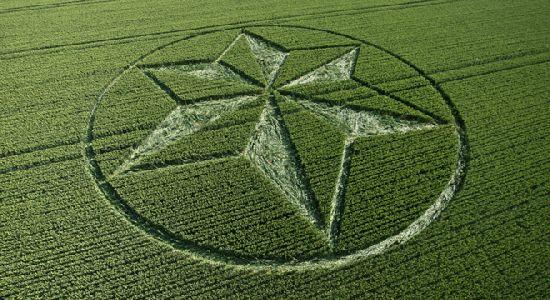 Crop Circles. Círculos de las Cosechas 2014 Cc5_110