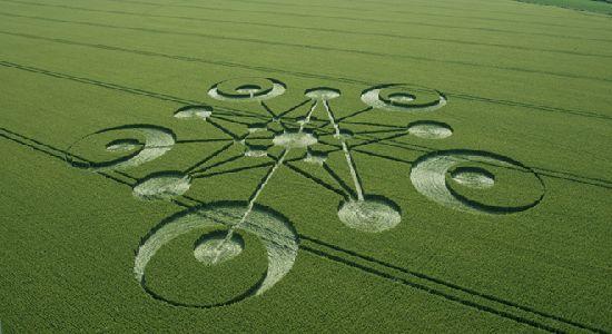 Crop Circles. Círculos de las Cosechas 2014 Cc7_110