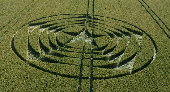 Crop Circles. Círculos de las Cosechas 2014 Cc8_110