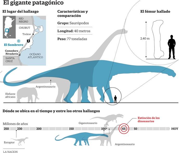 Paleontólogos argentinos aseguran haber descubierto el dinosaurio más grande del mundo Dinosa10