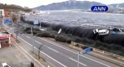 Criatura mutante grabada en el Tsunami del Japón Images11