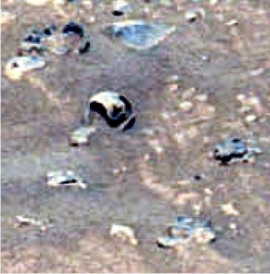 Marte : Misterio y Anomalías M13e_111