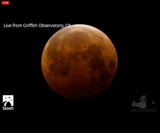 "Eclipse total de Luna, ""Luna de Sangre"" miércoles 8 de octubre Portap14"