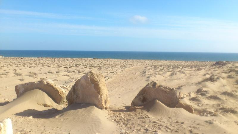peche sur la plage Dsc_0016