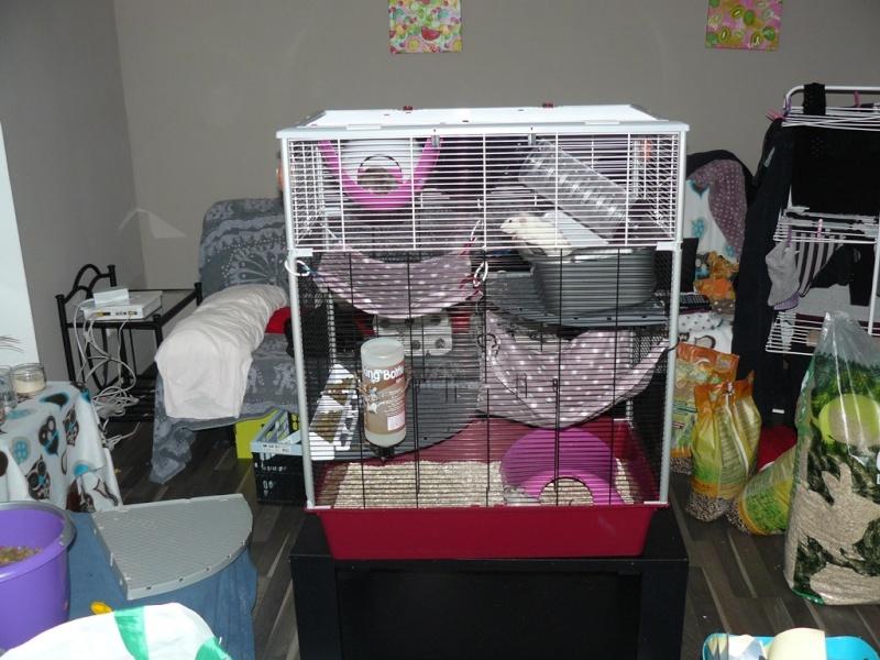 Cage Ruffy 2 + Cage Furet plus et son extension P1210610