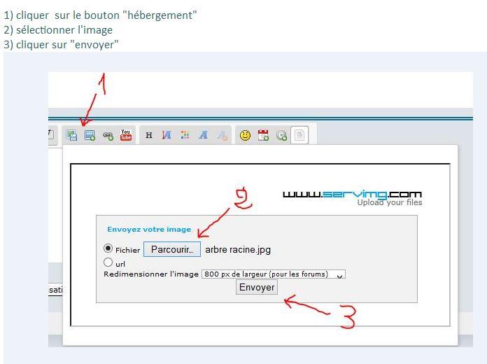 Comment insérer une image sur le forum Inerti10