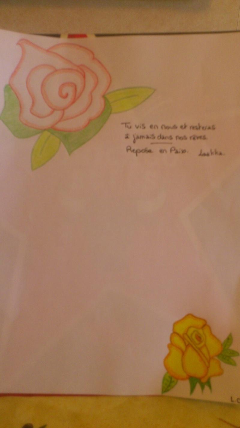 Mes essais dans le dessin ...  Dsc_0210