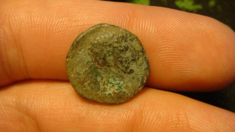 Bronze GERMANVS INDVTILLI au taureau (Quadrans) Dsc04319