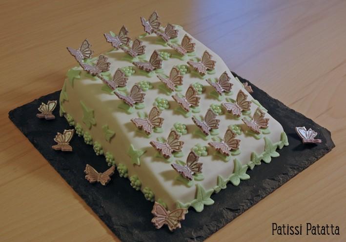 papillon - Page 21 Envol-10