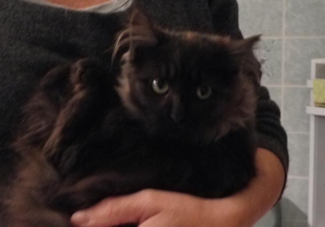 Kitty et Jessy Img_5339