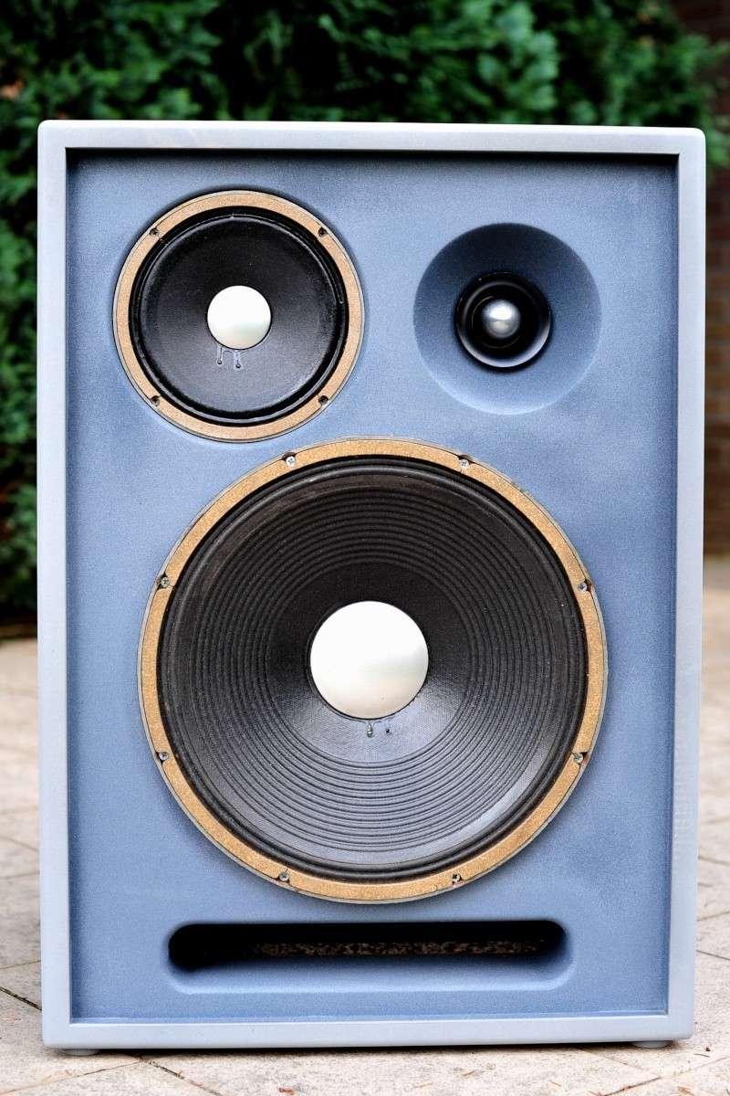 Réédition limitée de la   Will Audio C115 , full JBL Alnico  Dsc_1714