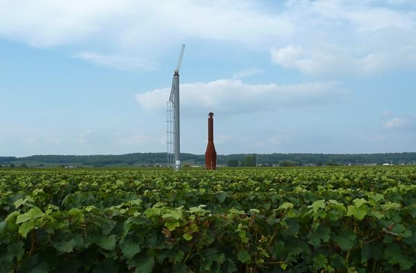 Festi Vini 2014  : Vignes vin et randos dans le 49 01811