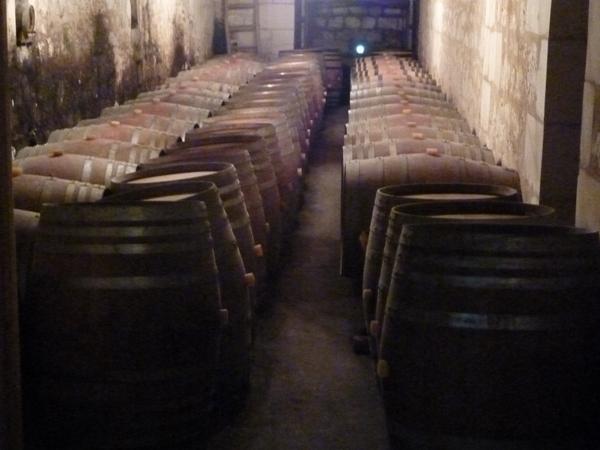 Festi Vini 2014  : Vignes vin et randos dans le 49 03011