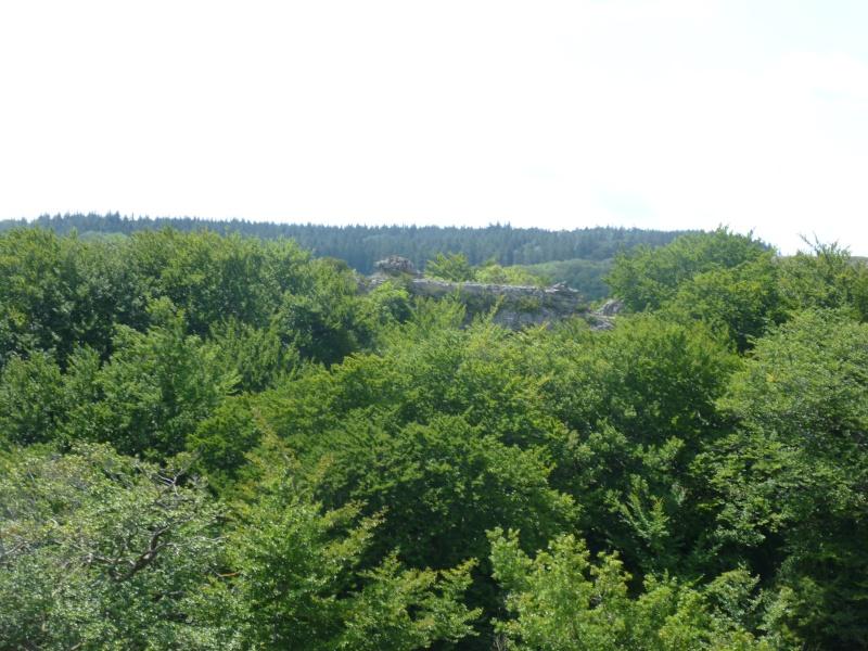 Terrain de 60 ha sur le Larzac P1040016