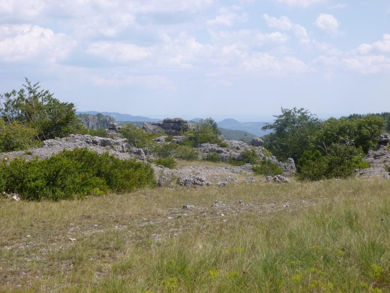 Terrain de 60 ha sur le Larzac P1040018