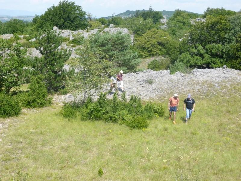Terrain de 60 ha sur le Larzac P1040019